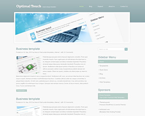 OptimalTouch Website Template